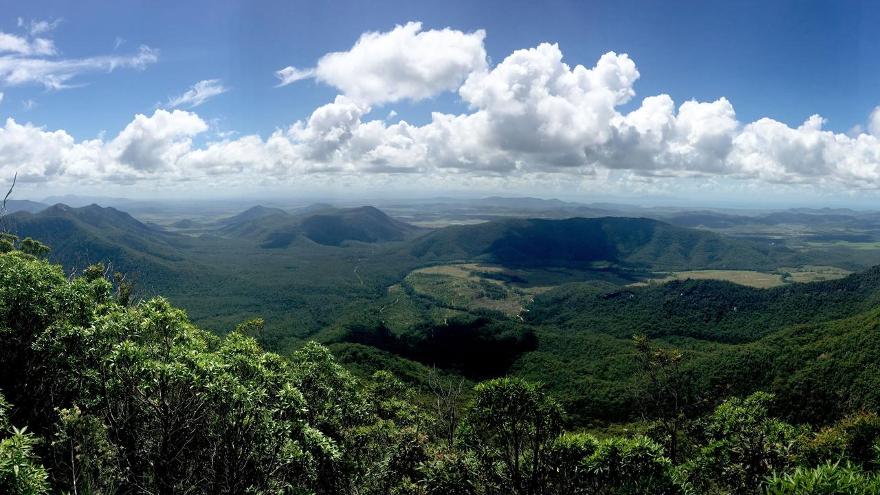 A view of Cathu State Forest from a lookout. Picture: File.