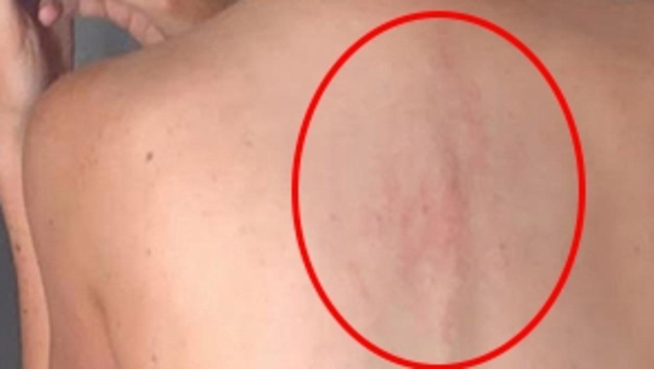Kangaroo attack on woman blamed on Sarah Jessica Parker perfume