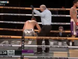Boxer butchered in 'grotesque' obliteration