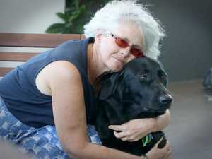 Blind woman victim of unleashed rogue dog