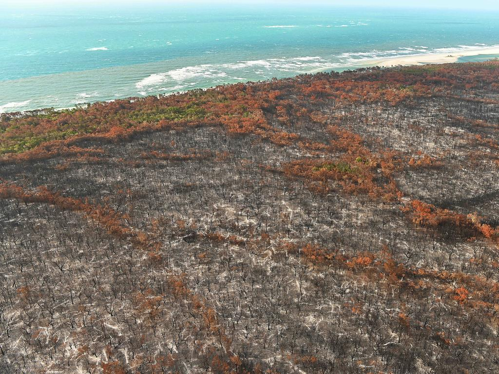 The burnt aftermath of the bush fire on world heritage-listed Fraser Island, north of the current fire front, which is in a no fly zone. Pic Lyndon Mechielsen