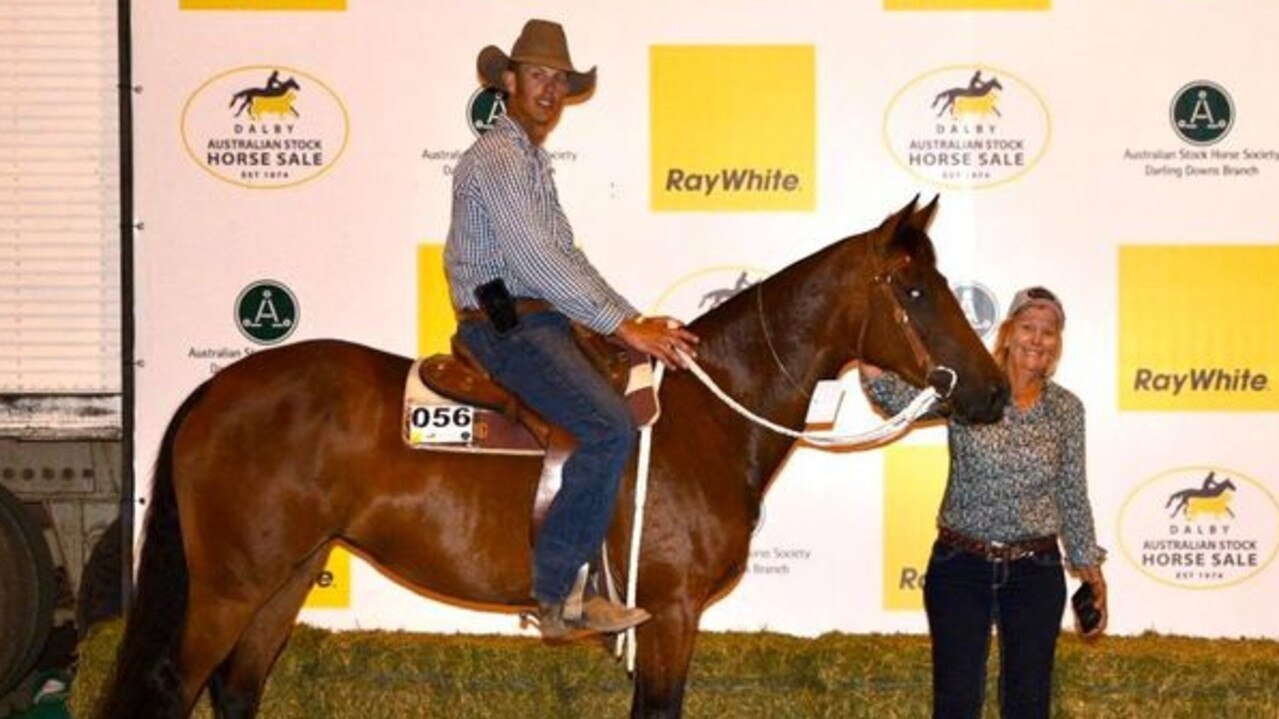 The top priced mare (Lot 56 — Cedargrove Con D Lisa) at the Ray White Equine Dalby Stock Horse Sale. Picture: Ray White Dalby