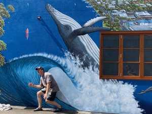 Artist captures Noosa's surfing soul