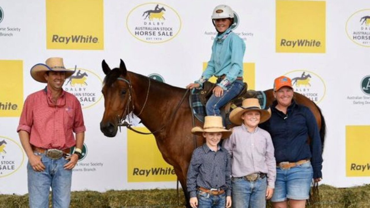HUGE SALE: The top priced Gelding (Lot 133) at Ray White Equine Dalby Stock Horse Sale. Picture: Ray White Dalby