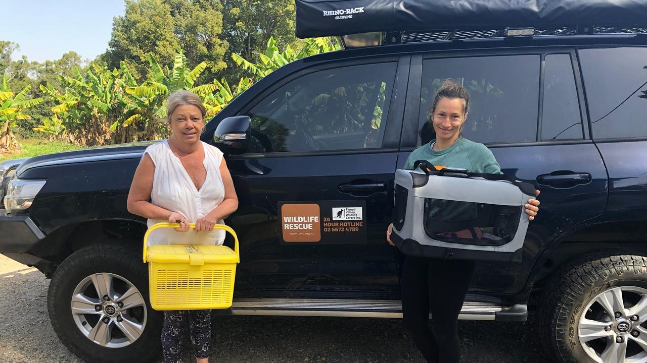 Michelle Phillips and Sarah Jantos from Tweed Valley Wildlife Carers dropped off cages for any injured animals the firefighters might find during the Duranbah bushfire earlier this year.