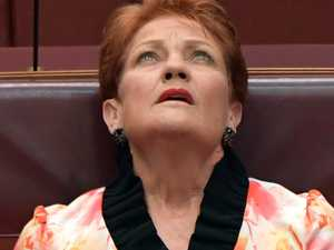 'Lose your rights': Pauline's 'racist' spray