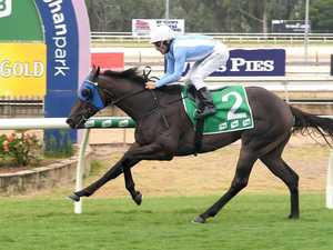 Rocky-trained horses to take on big races in Brisbane