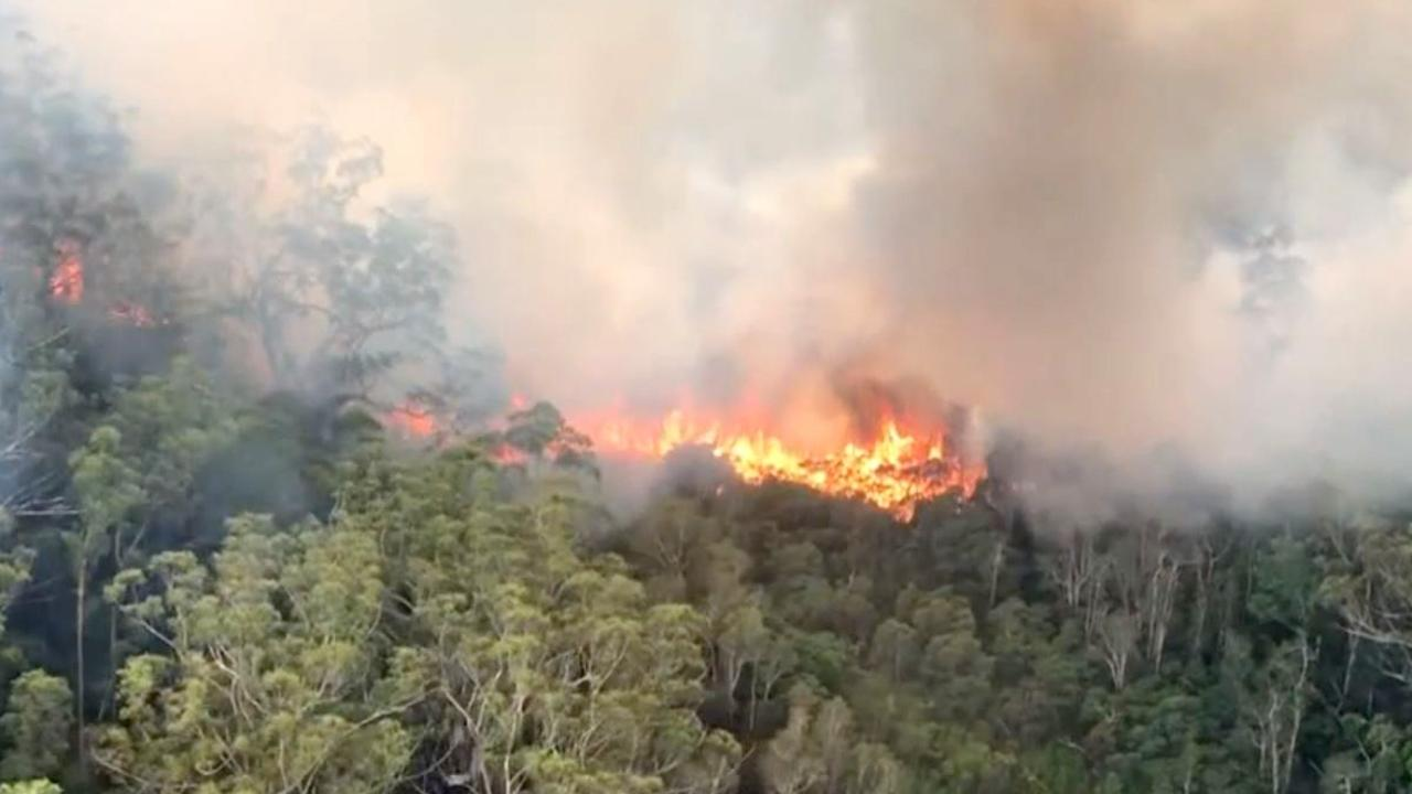 Aerial firefighting at the (K'gari) Fraser Island bushfire. Photo Supplied QFES