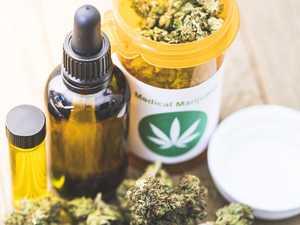 Drug grower gets medical marijuana script