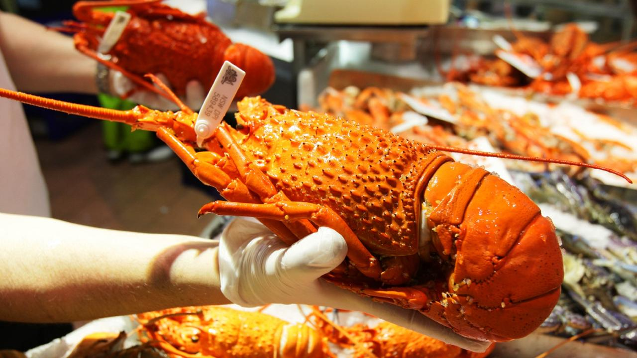 Coles are selling half price rock lobsters this Christmas. Picture: Sam Mooy
