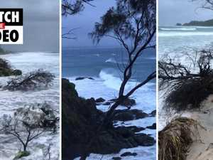 Cyclone-like weather hitting NSW and Qld