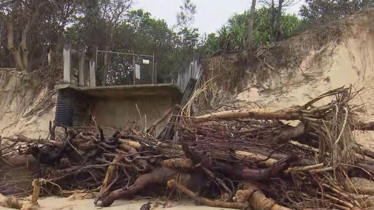 Fallen trees litter the main beach. Picture: 9News