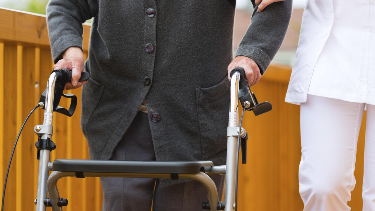 A special group to advocate for voluntary euthanasia laws has been endorsed by senior Labor Party members.