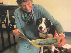 'Desperate for volunteers': StoryDog's call for fury friends