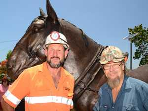 A miner's best mate - the incredible tale of our pit ponies