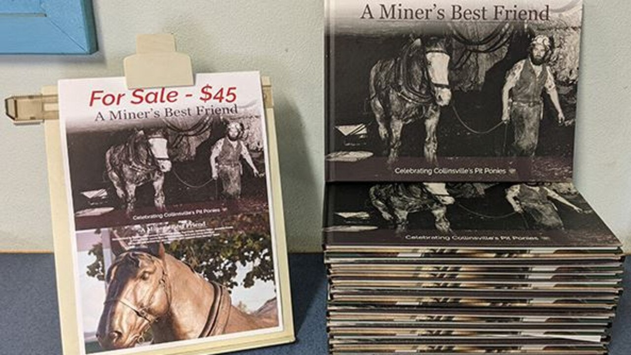 New book A Miner's Best Friend, produced by the Collinsville Connect Telecentre, celebrates the history of the pit pony in Collinsville. Photo: Contributed