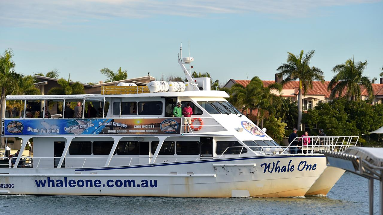 The Whale One arrives back at Mooloolaba. Picture: File
