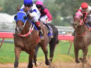 Iron horse to tackle Gladstone Cup