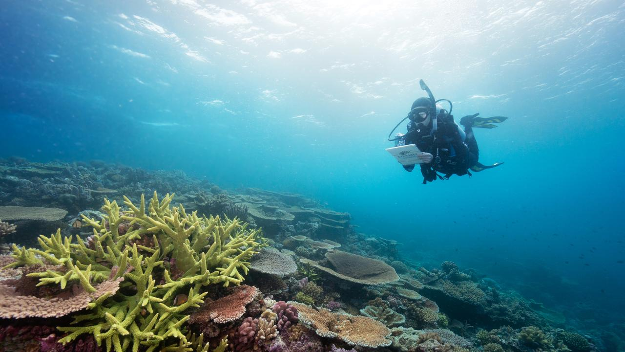 The Great Barrier Reef is one of Australia's national treasures. Photo: Great Barrier Reef Marine Park Authority
