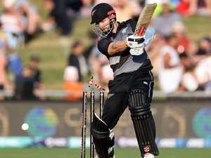 Bizarre cause of cricket match delay