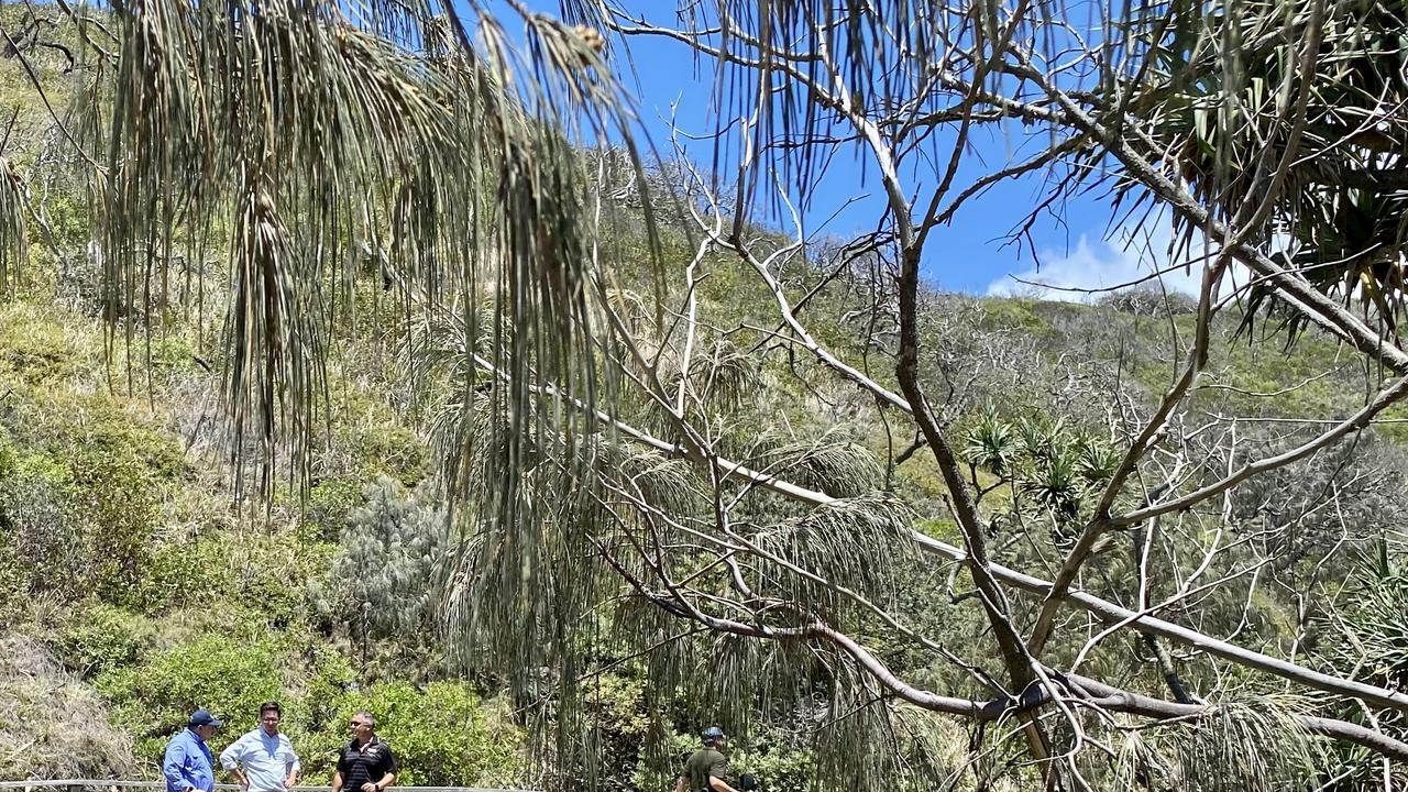 Federal member for Wide Bay Llew O'Brien visited fire-ravaged Fraser Island.
