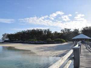 Update: COVID hotspot guests on CQ island all negative