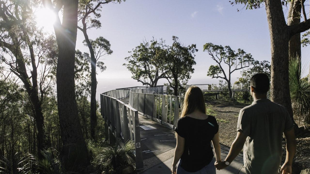 Mount Archer Nurim Circuit Elevated Boardwalk. Picture: Contributed