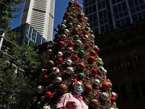 When to pack up your Christmas tree