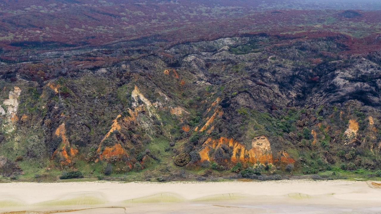 The eastern beach of K'gari/Fraser Island after the bushfires on December 8, 2020. Picture John Wilson