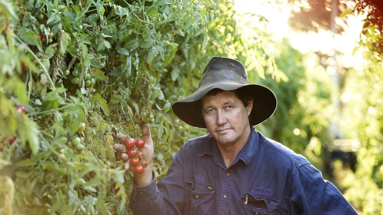 Gumlu Bowen Growers Association president Carl Walker said plans needed to be made now to ensure there were enough workers for the 2021 season. Picture: Supplied