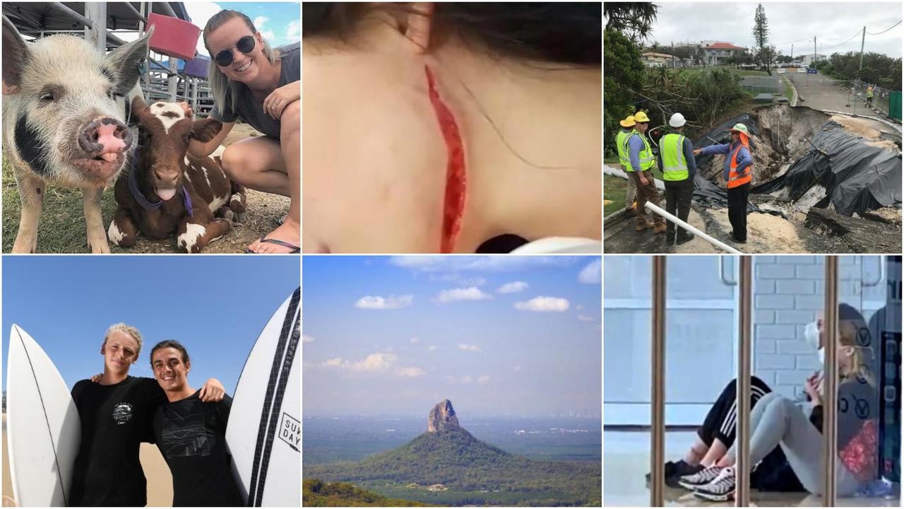 From a pig slaughter, a wild Snapchat brawl and scary COVID outbreaks, the Sunshine Coast Daily has taken a look at some of the biggest stories you may have missed or forgotten happened in 2020.