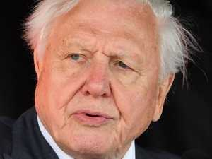 Attenborough's grim extinction warning