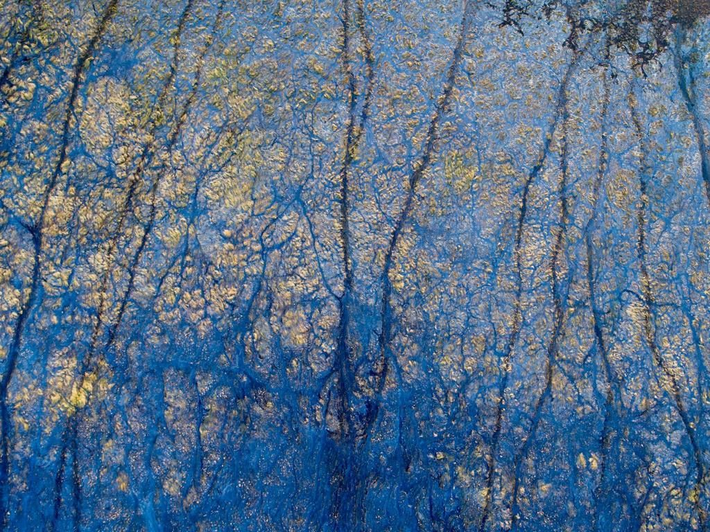 Blue Poles, Stuart Murphy