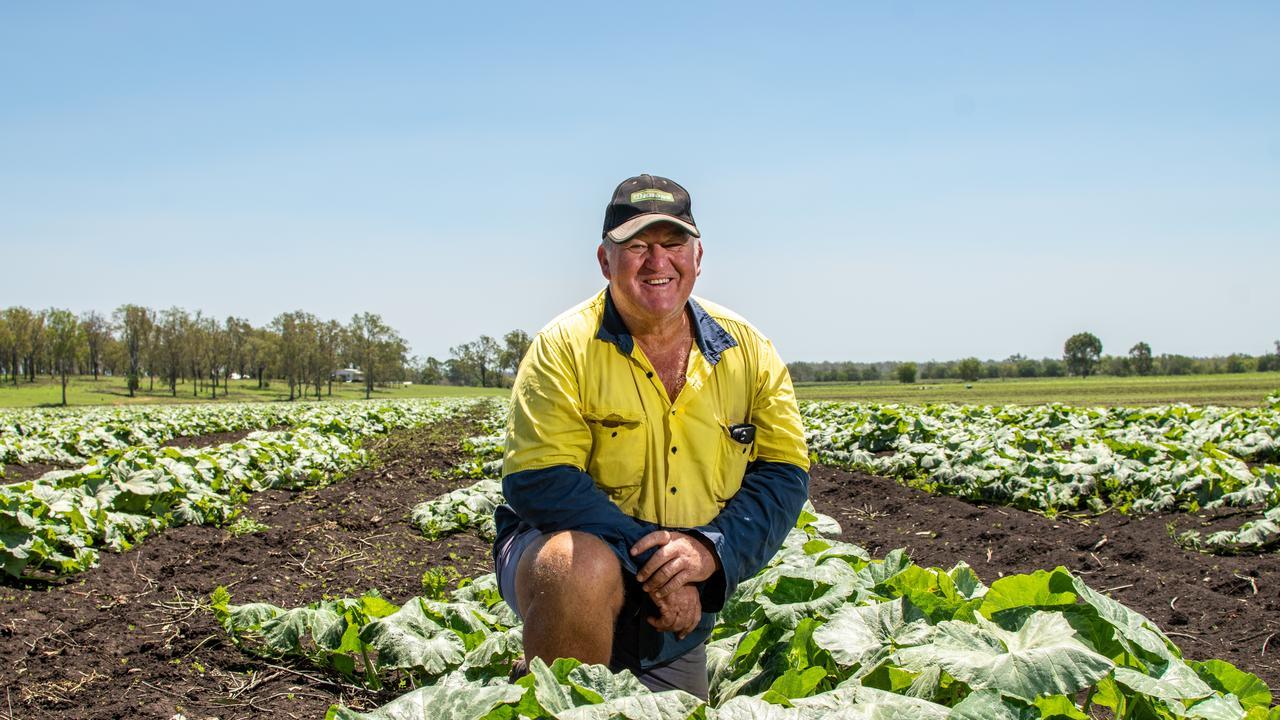 Lockyer Valley vegetable grower Greg Lerch at his Laidley farm. PHOTO: ALI KUCHEL