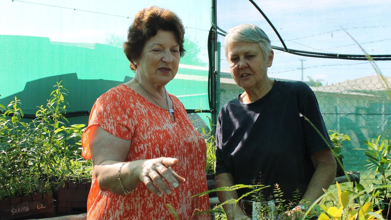 Sarina Landcare treasurer Jenny Price and secretary Jen Mitchell inside the association's community nursery.