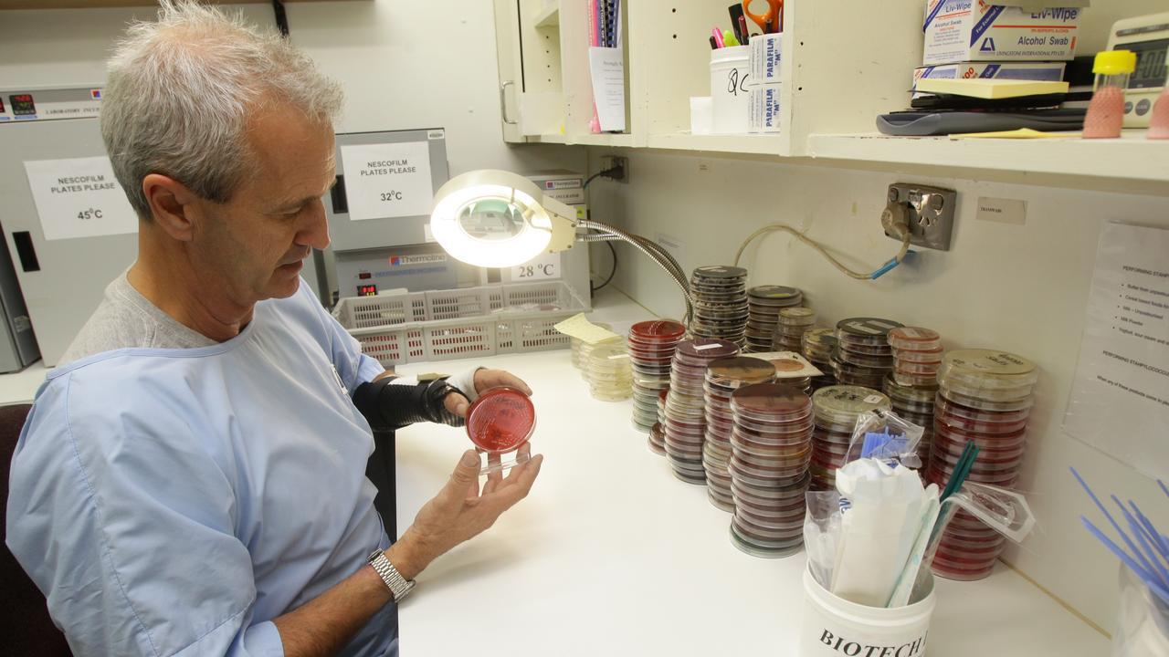 Biotech Laboratories' General Manager Glen Pinna. Photo - David Kapernick
