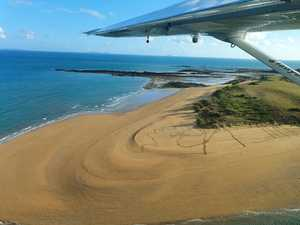 Aerial survey provides key info for turtle conservation
