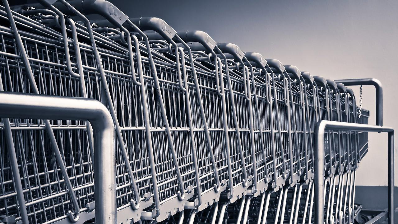 A woman has admitted to concealing nearly $300 of items in a trolley in an act of stealing.