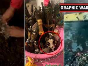 Azealia Banks cooks dead pet cat