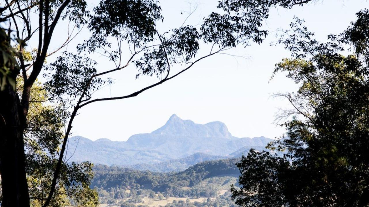 Wollumbin National Park's summit track has been closed since March last year.