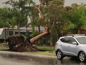 IN PHOTOS: Coast smashed by severe summer storm