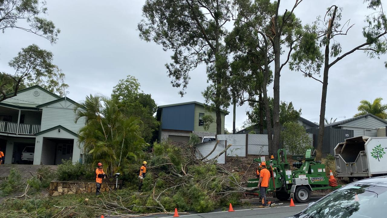 An Aroona property was damaged when these trees fell in Saturday's storm