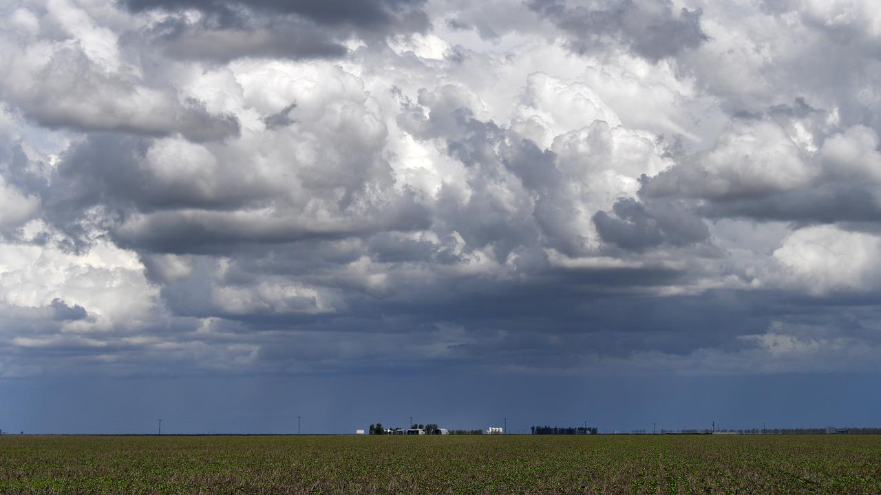 LIQUID GOLD: Parts of the Western and Darling Downs are expected to be hit by storms on January 18. Picture: AAP Image/Dan Peled