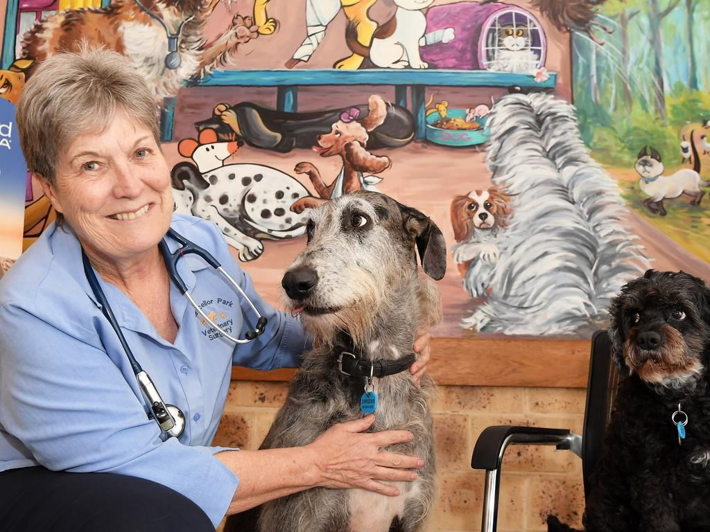 Chancellor Park Veterinary Clinic owner Annabel Shepherd opened their innovative