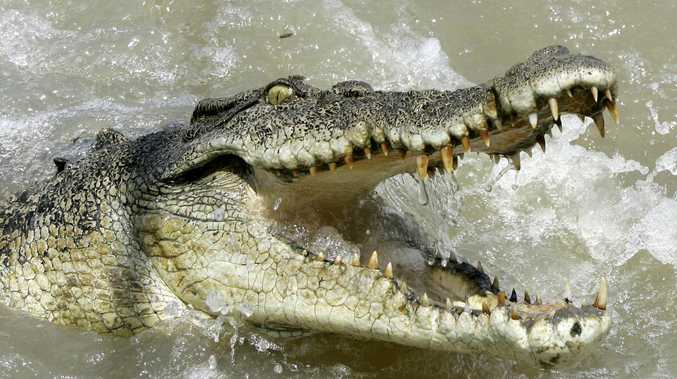 Man cheats death by swimming through croc-inhabited waters