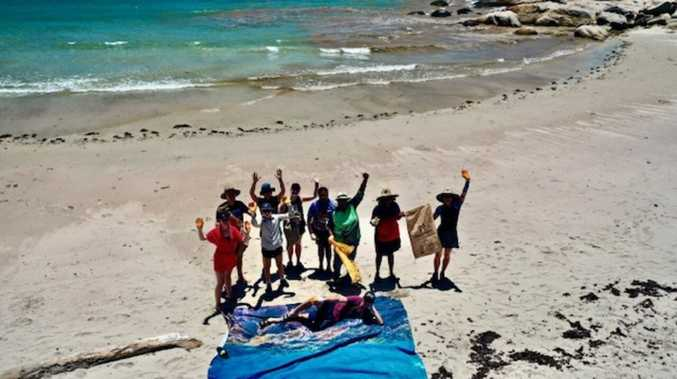 Reef health project hits final stages in Whitsundays
