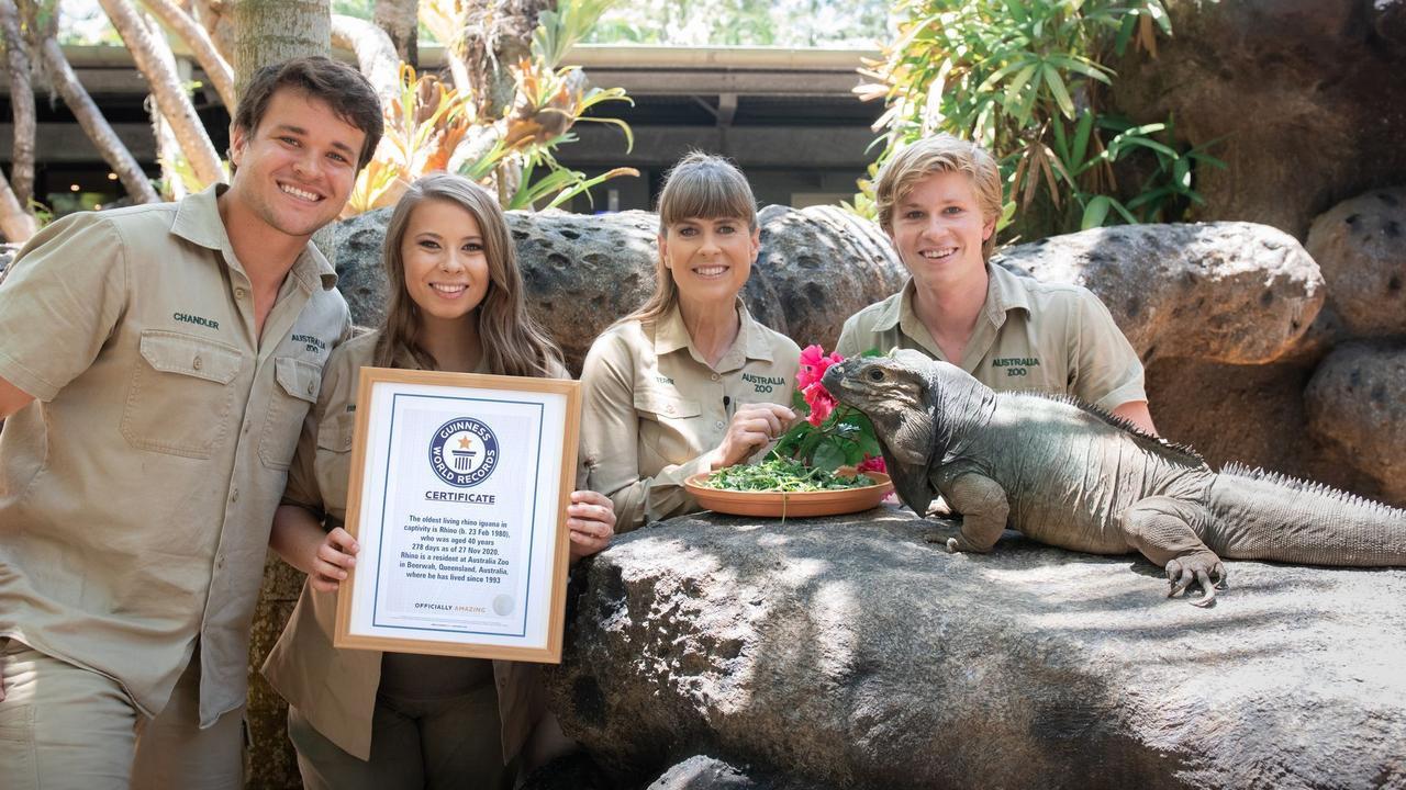 Rhino is presented his record by Chandler Powell and Bindi, Terri and Robert Irwin.