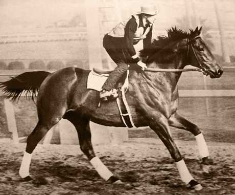 George Wolf riding Seabiscuit