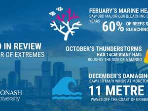 From monster waves to giant hail in a year of extremes