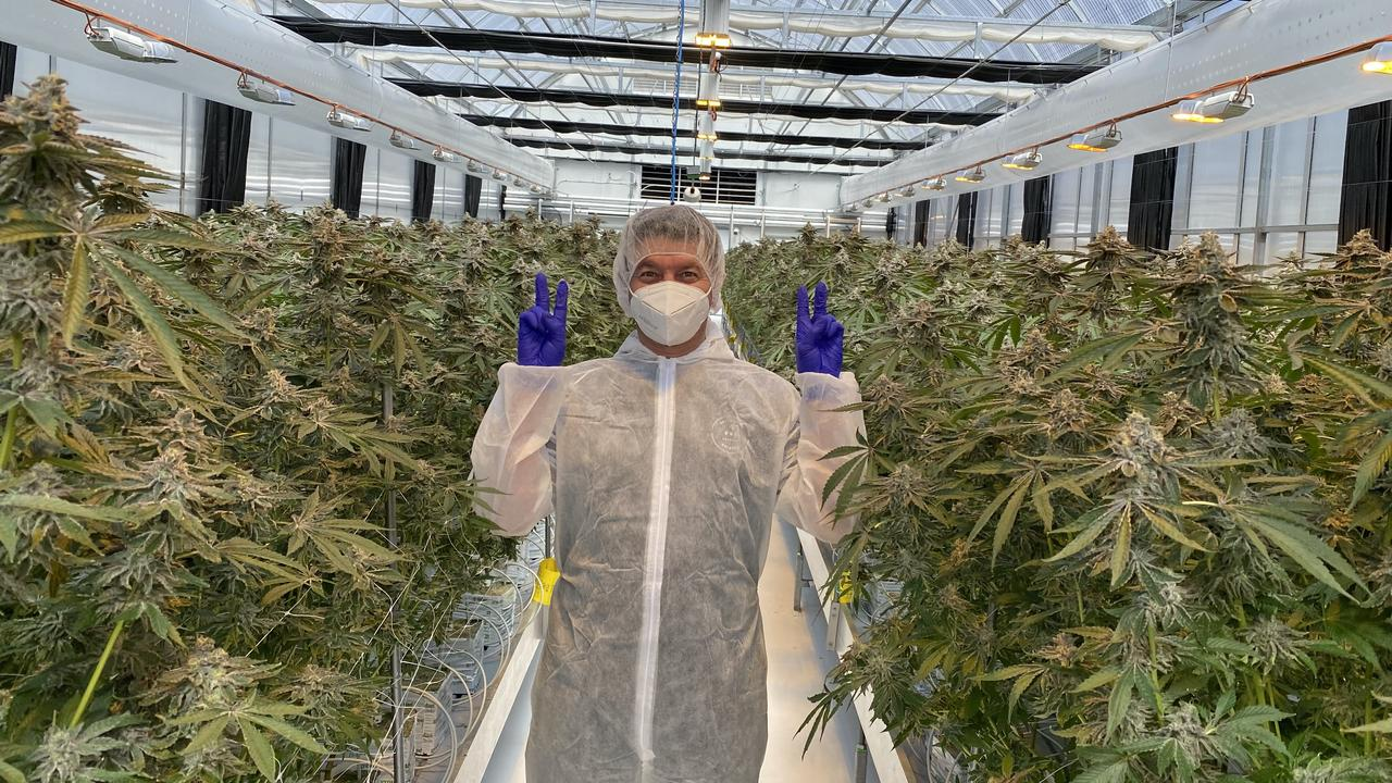 Matt Cantelo is the founder and CEO of Australian Natural Therapeutic Group. The company, the first in NSW to be approved to manufacture medical cannabis products, is moving its headquarters from Sydney to the Byron Shire.